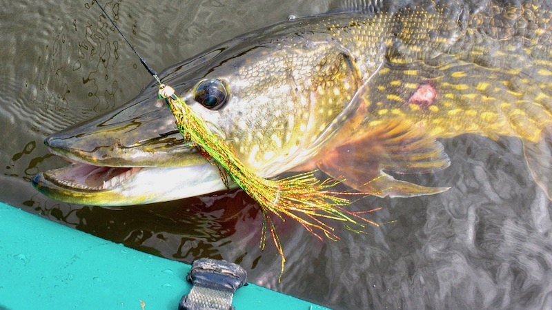 190514 northriver pike fly